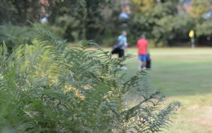 About Thames Ditton & Esher Golf Club
